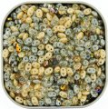 "Czech SuperDuo Two-hole Beads 5.5x2.5mm ""Moonstone"" Mix 24G"