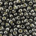 Seed Beads Round Size 8/0 27GM PermaFinish Galvanized Pyrite